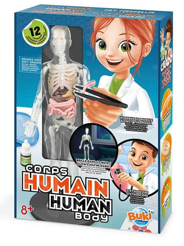 ערכת מדע - גוף אנושי